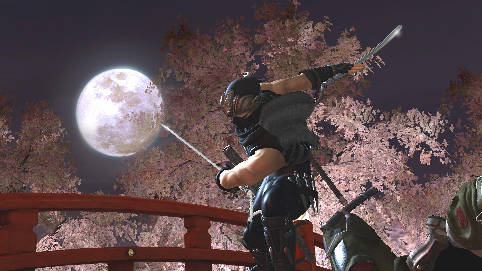 New High Res Ninja Gaiden 2 Screenshots Gaming Target